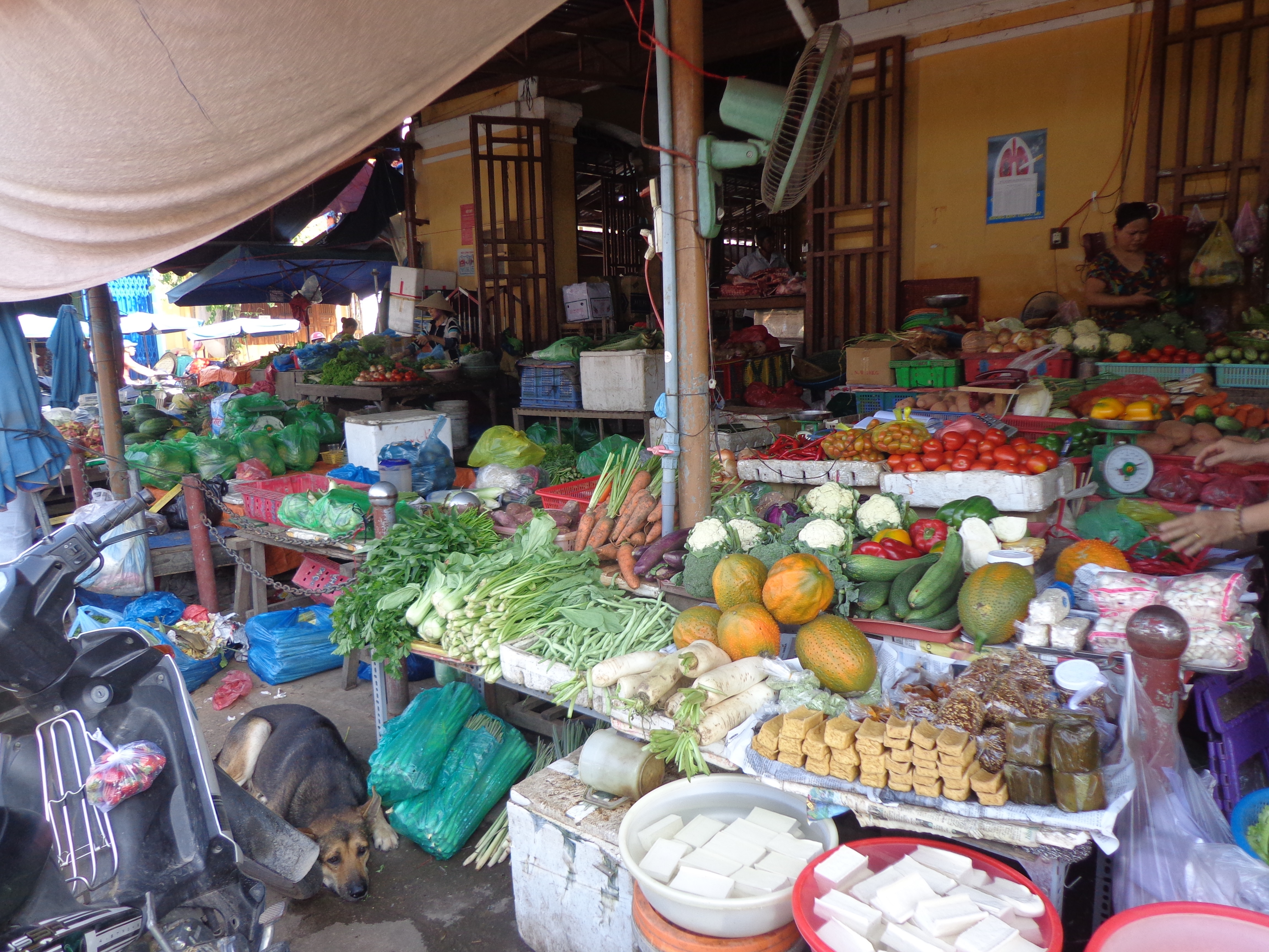 Fruits and vegetable shops are lined up outside the market building, spilling into the pavement.