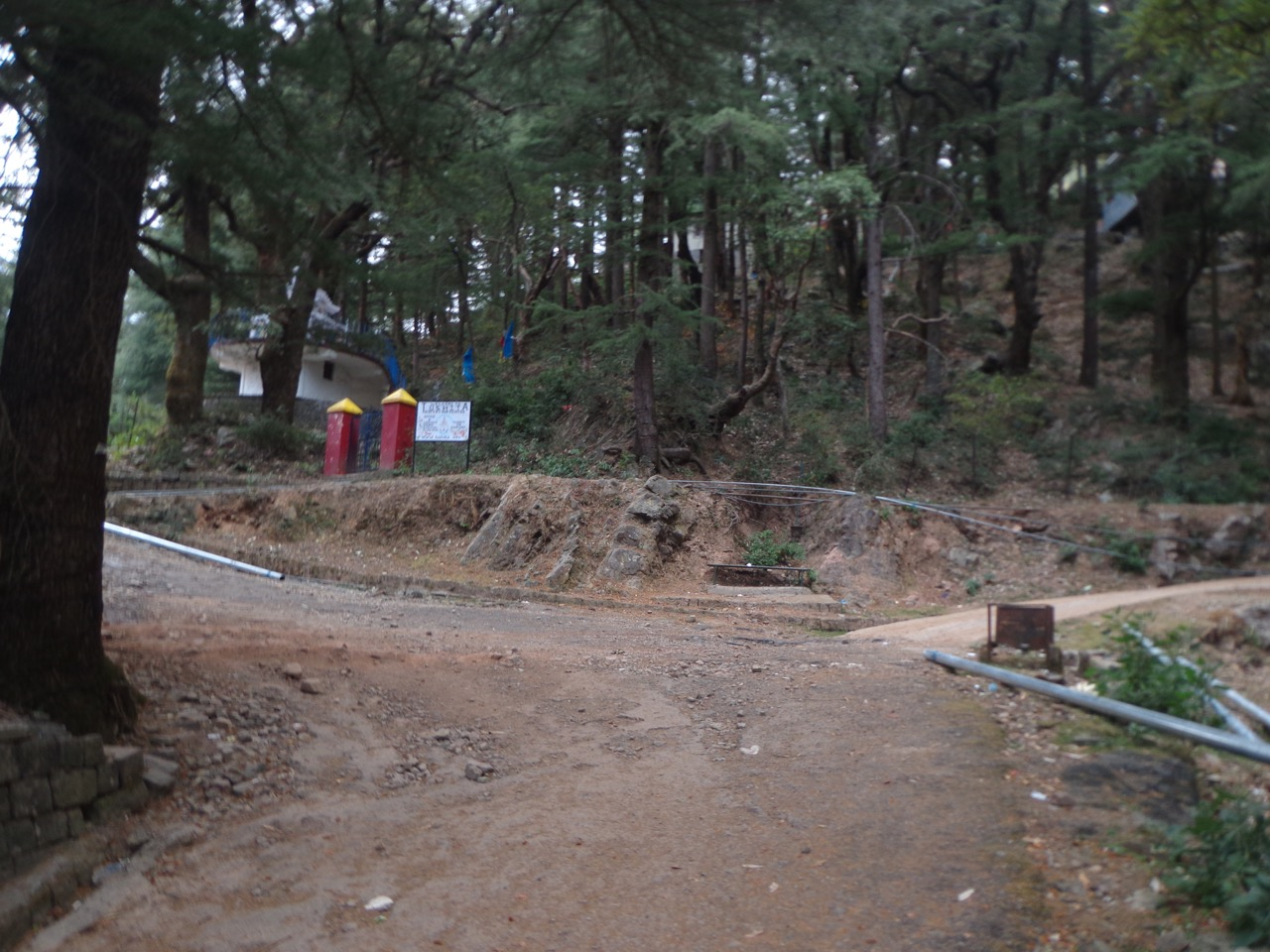 From the McLeod Ganj facing gate of Tushita Meditation centre, take the left trail. The metalled road on the right also reaches Dharamkot but it would take longer.