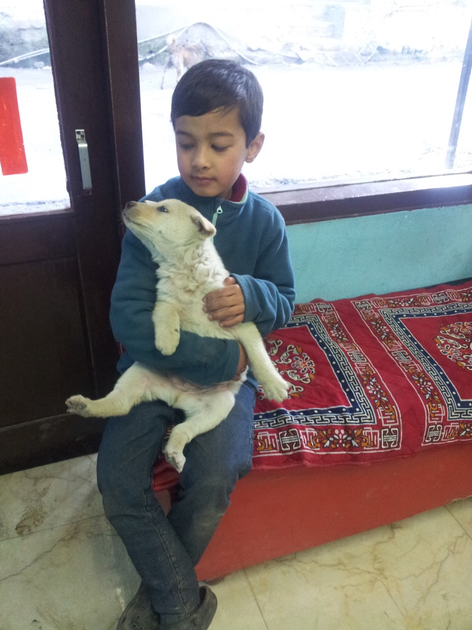 Anubhav playing with a stray puppy.