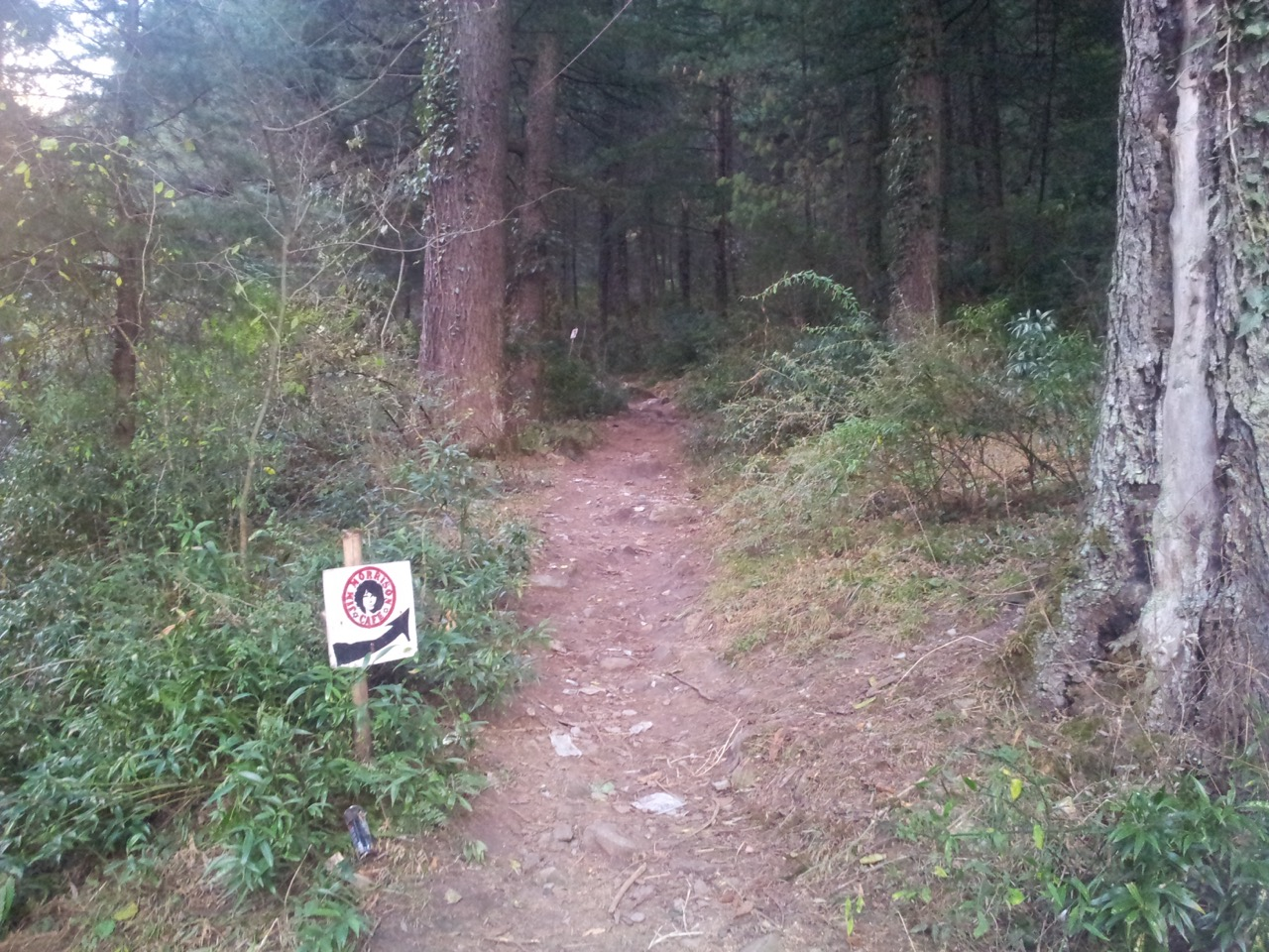 One has to walk the trail to reach the cafe. These small signs (only 3 en route) were my only guide.