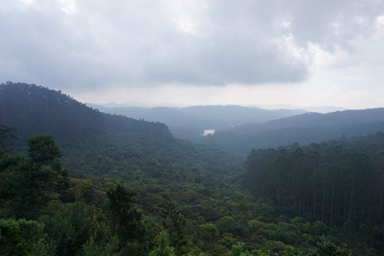 The hills from lake view point. Beyond the farthest hills is Munnar. There is no direct route to reach there.