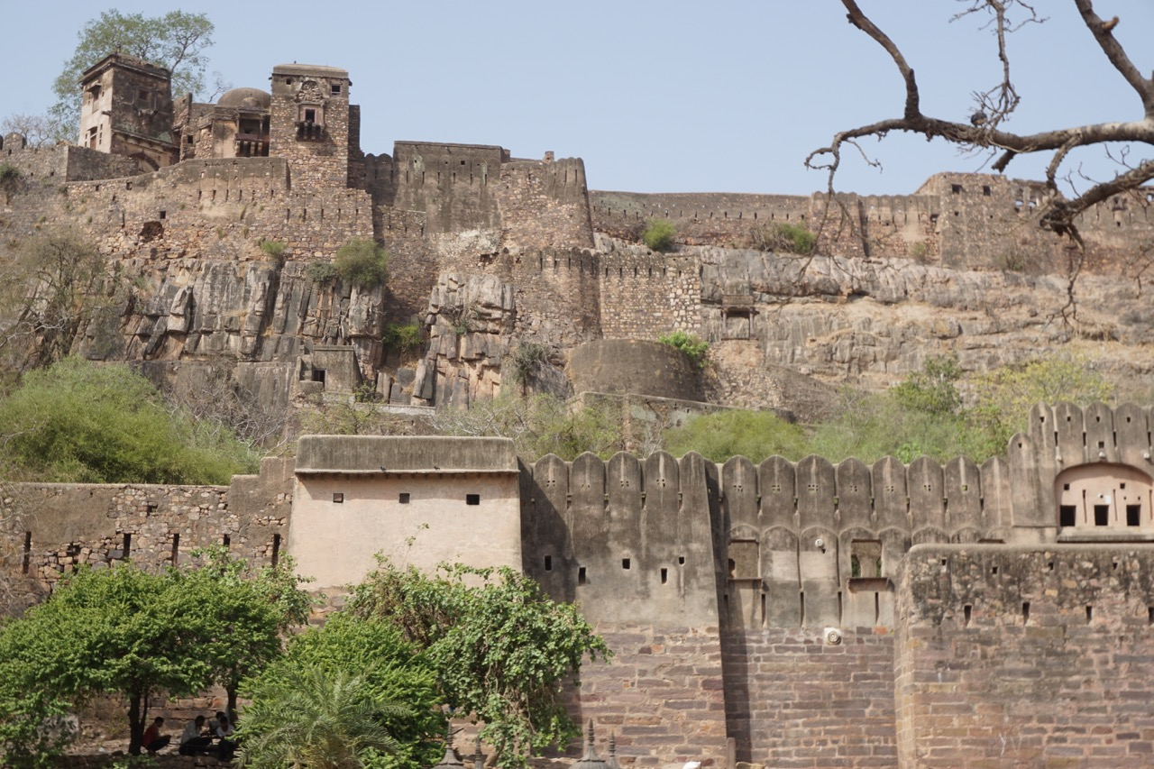 Ranthambore Fort, right at the entry of the national park.